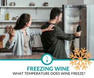 What Temperature does Wine Freeze At?