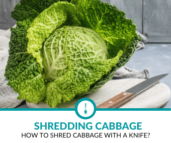 how to shred cabbage with a knife