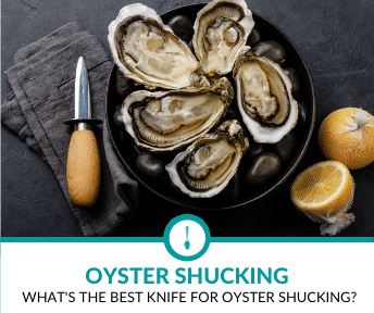 Best Knife for Oyster Shucking